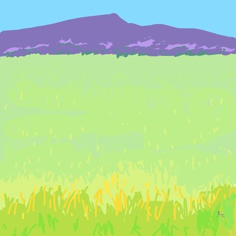 Carson_Ed_Grass_digital